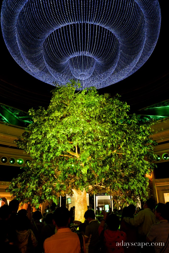 Tree of Prosperity 03