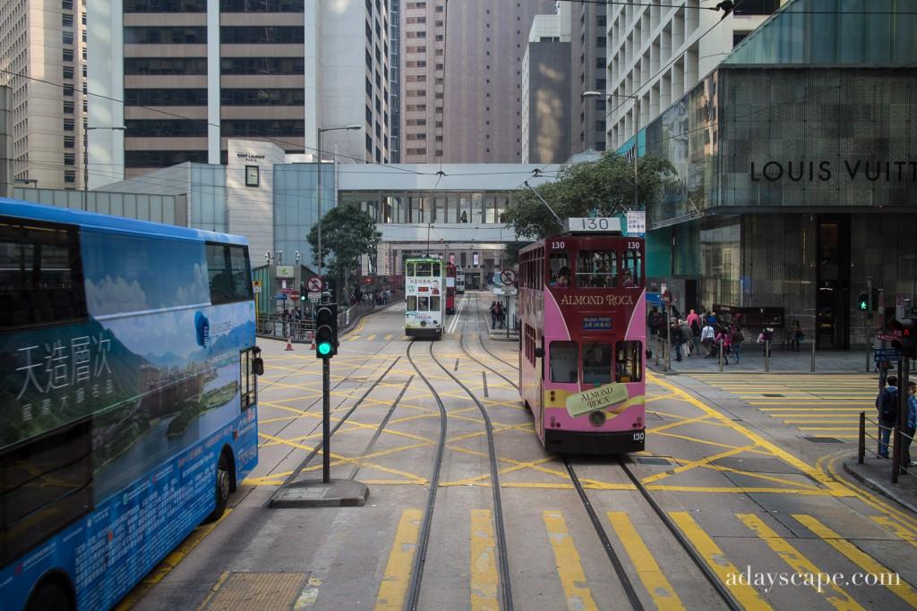 Trams 02