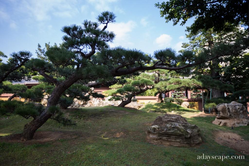 Nan Lian Garden 07