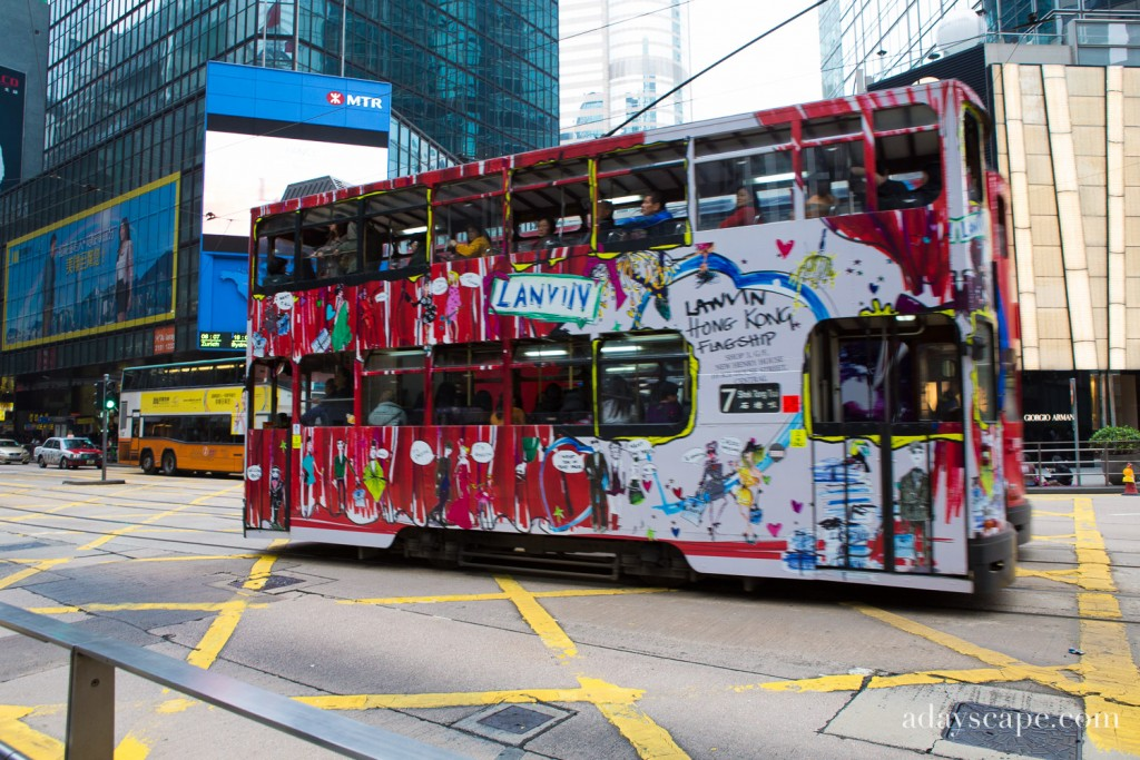 Trams 01