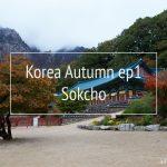 Korea Autumn ตามหาใบไม้เปลี่ยนสีที่ เกาหลี  EP1
