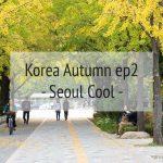 Korea Autumn ตามหาใบไม้เปลี่ยนสีที่ เกาหลี  EP2