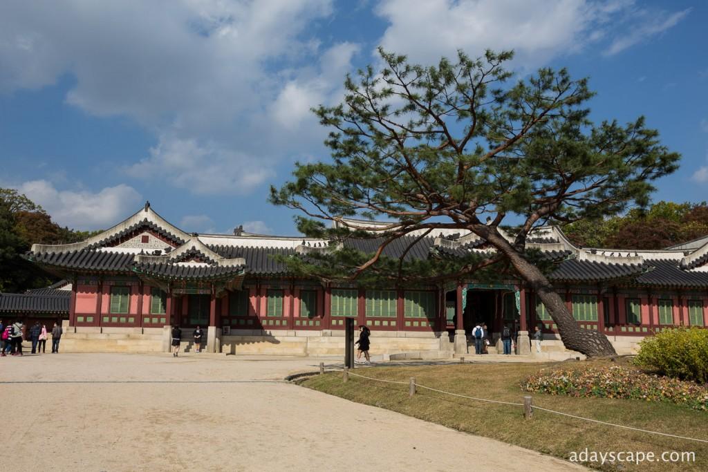 Changdeokgung Palace 04