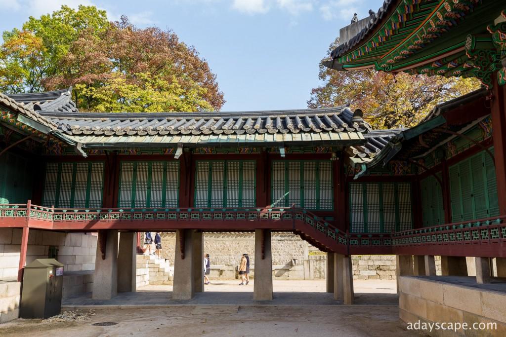 Changdeokgung Palace 10