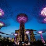 10 เหตุผลที่คุณต้องไป สิงคโปร์