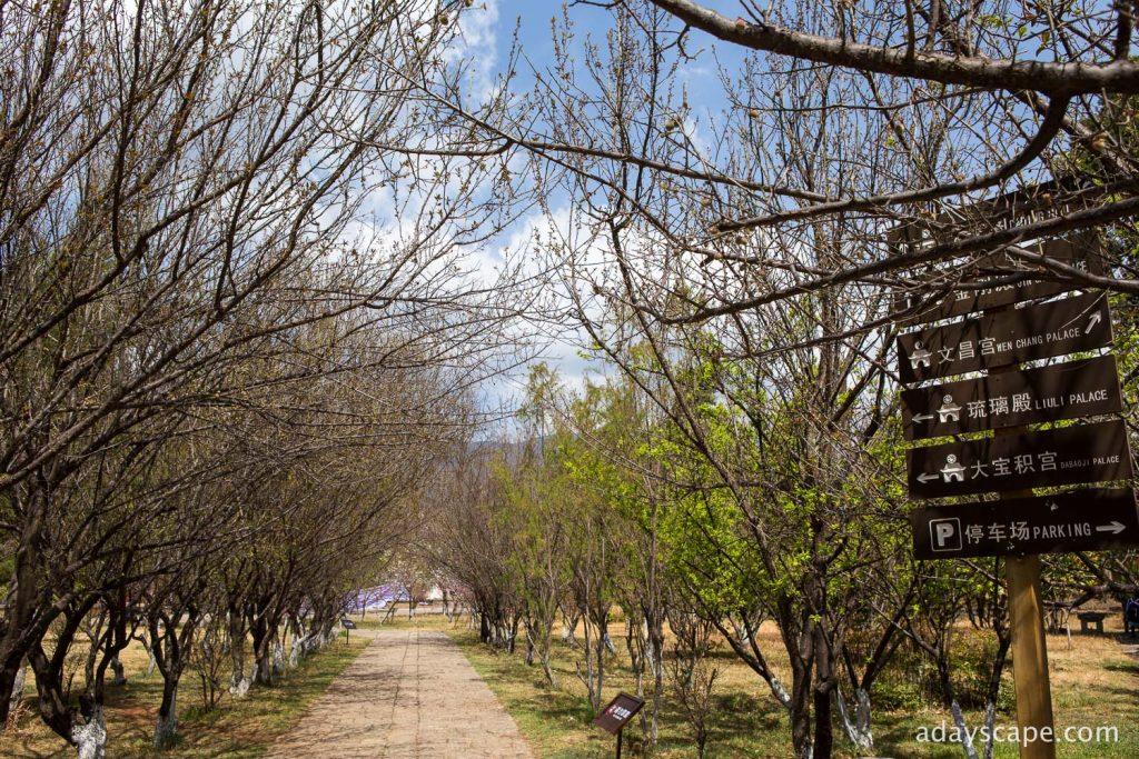 Baisha Village 03