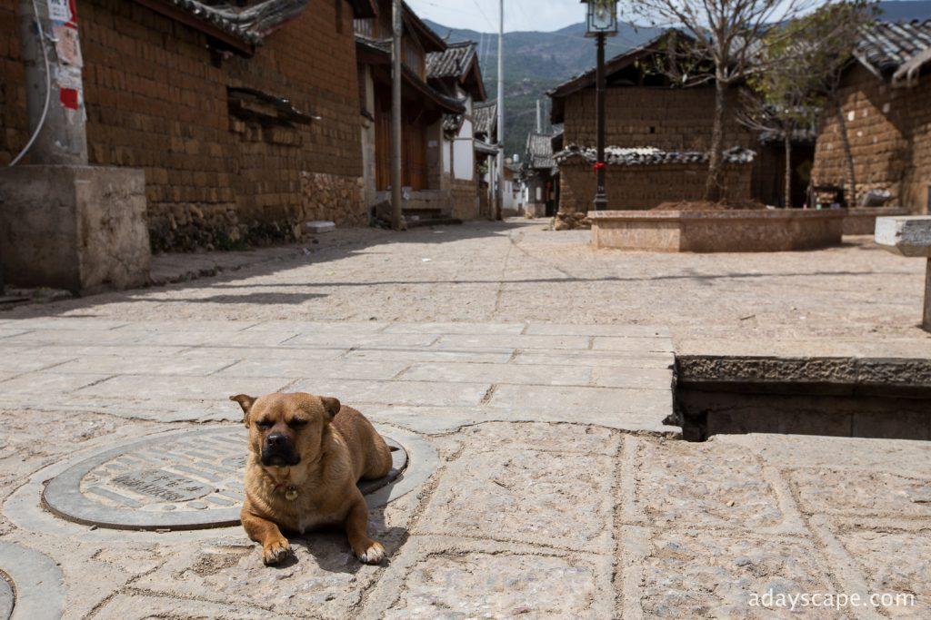 Baisha Village 16