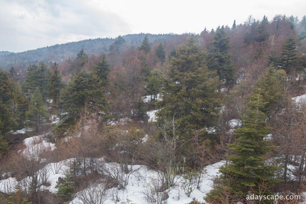 Shika Snow Mountain 04