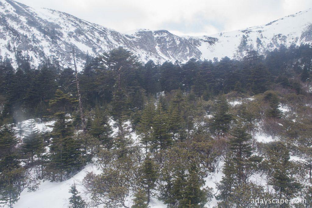 Shika Snow Mountain 17