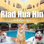 แนะนำที่พักหัวหิน Riad Hua Hin (ริยาจ หัวหิน)