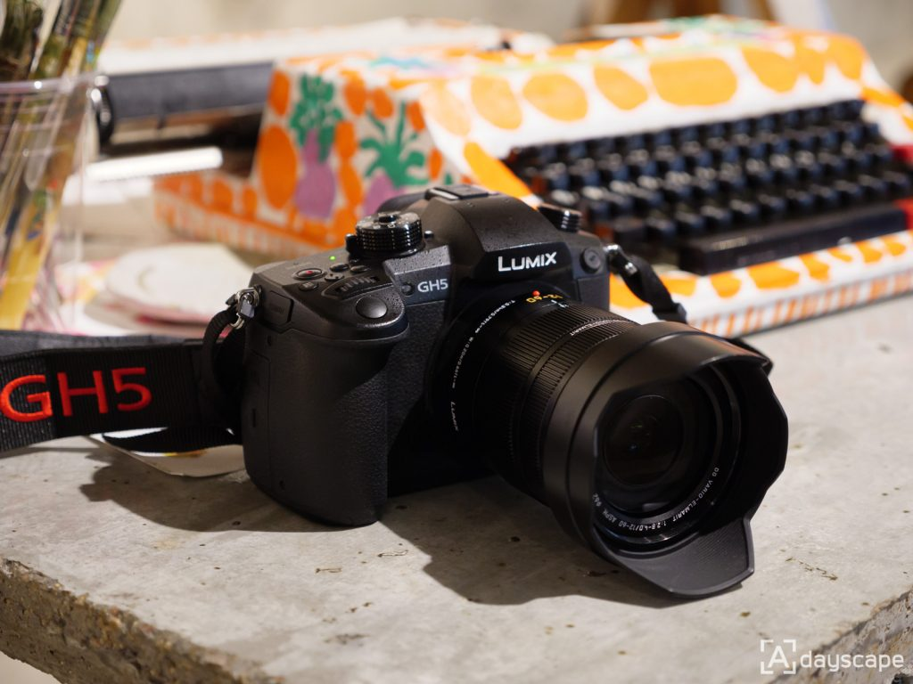 Panasonic LUMIX GH5 -1