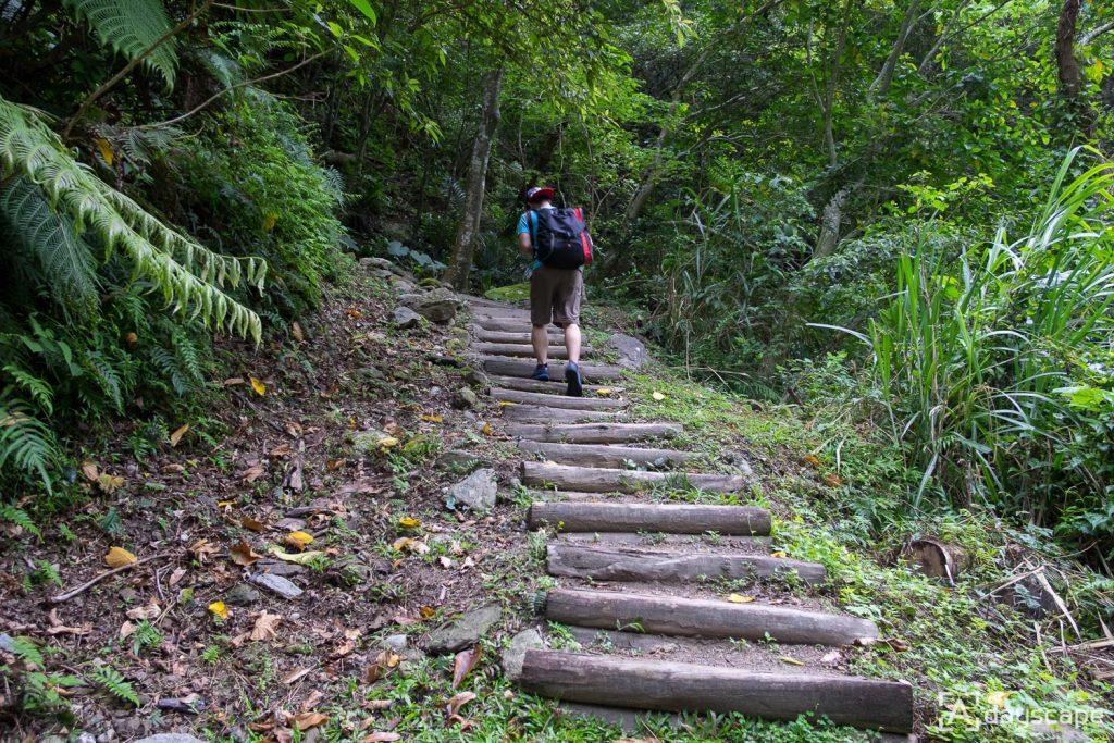 Zhuilu Old Trail 2