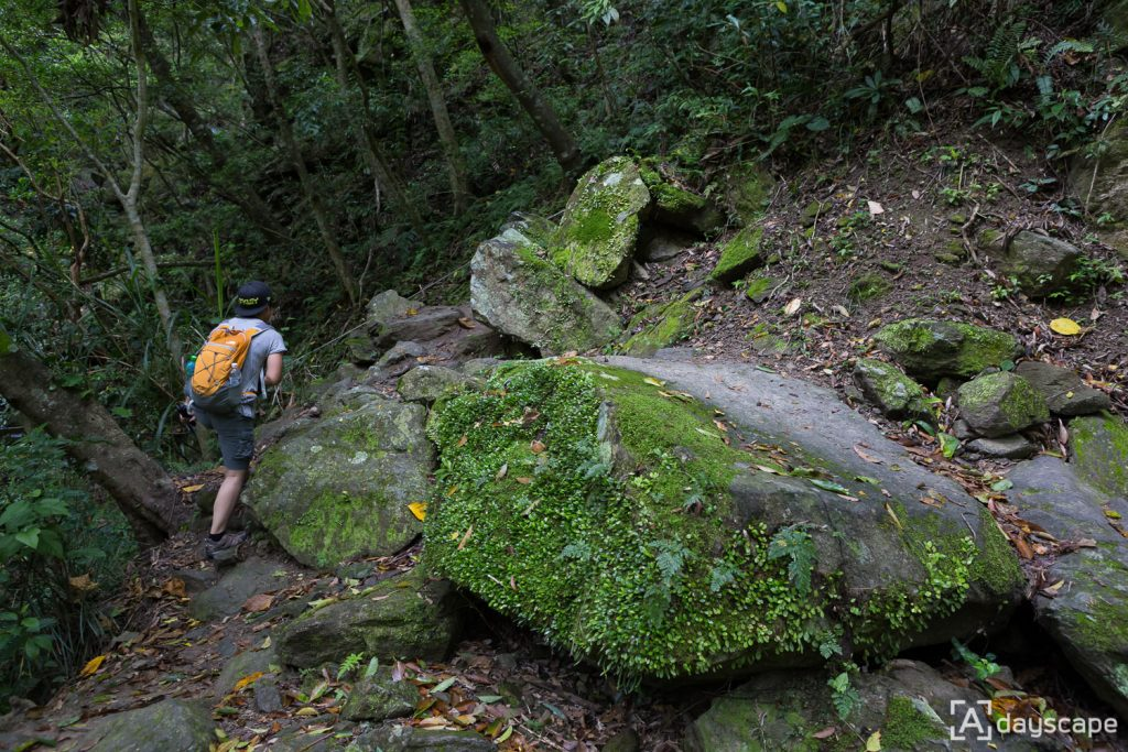 Zhuilu Old Trail 4