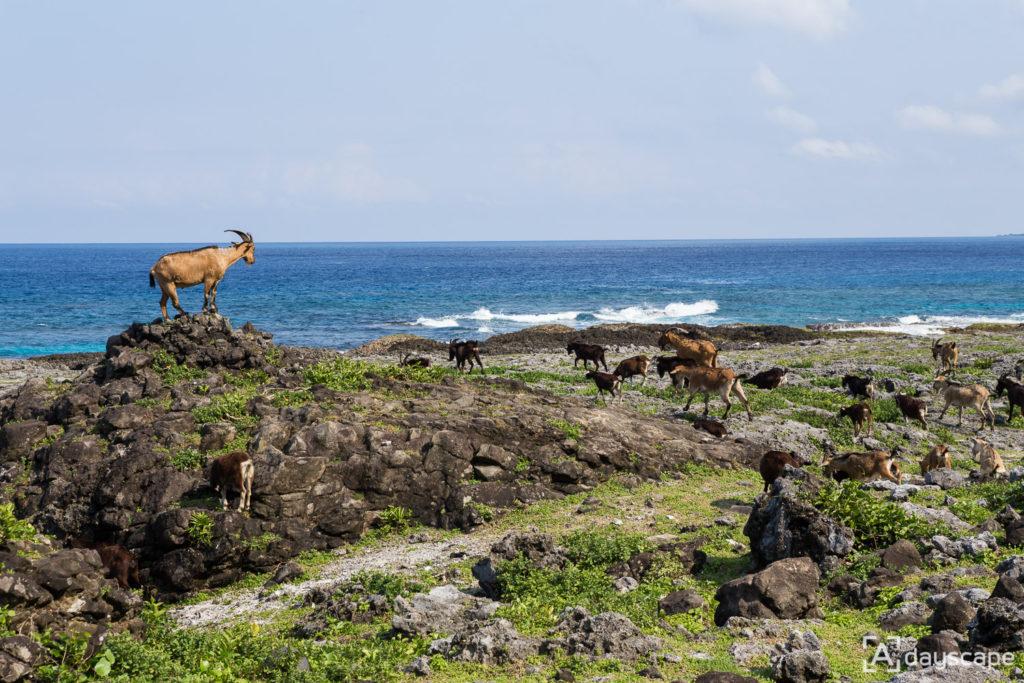 Lunyu Island 7