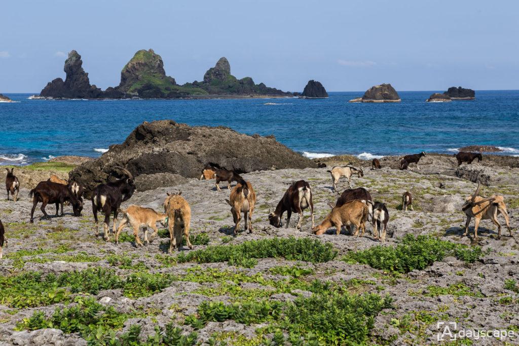 Lunyu Island 8