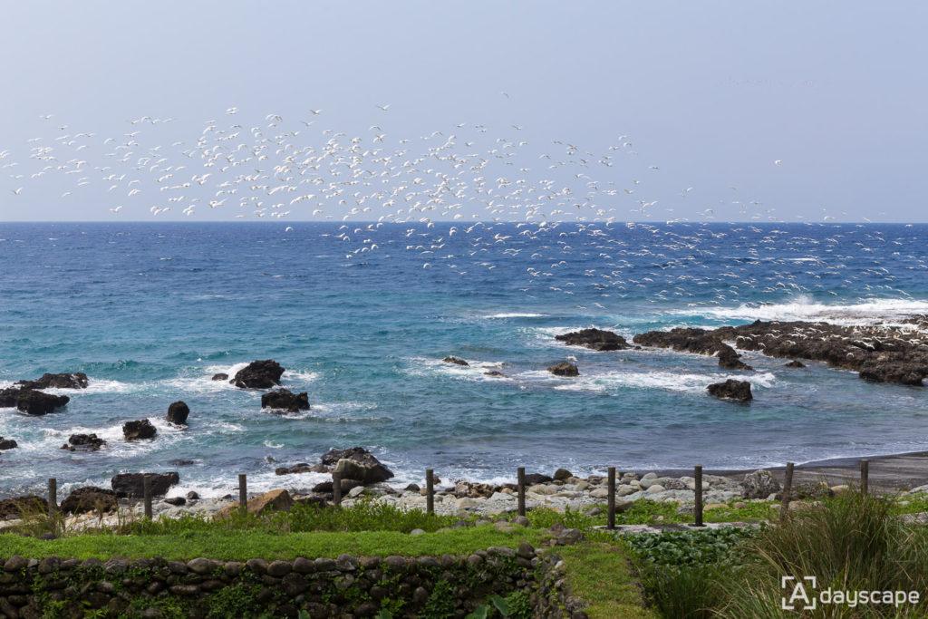 Lunyu Island 1